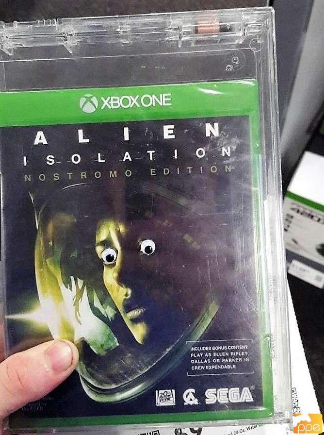 Everyone is scared of xenomorph