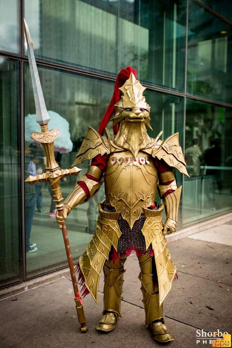 Dark Souls - cosplay