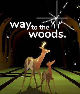 Way to the Woods