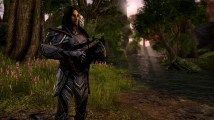 Recenzja gry: The Elder Scrolls Online: Tamriel Unlimited #5