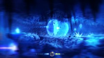 Recenzja gry: Ori and the Blind Forest #8