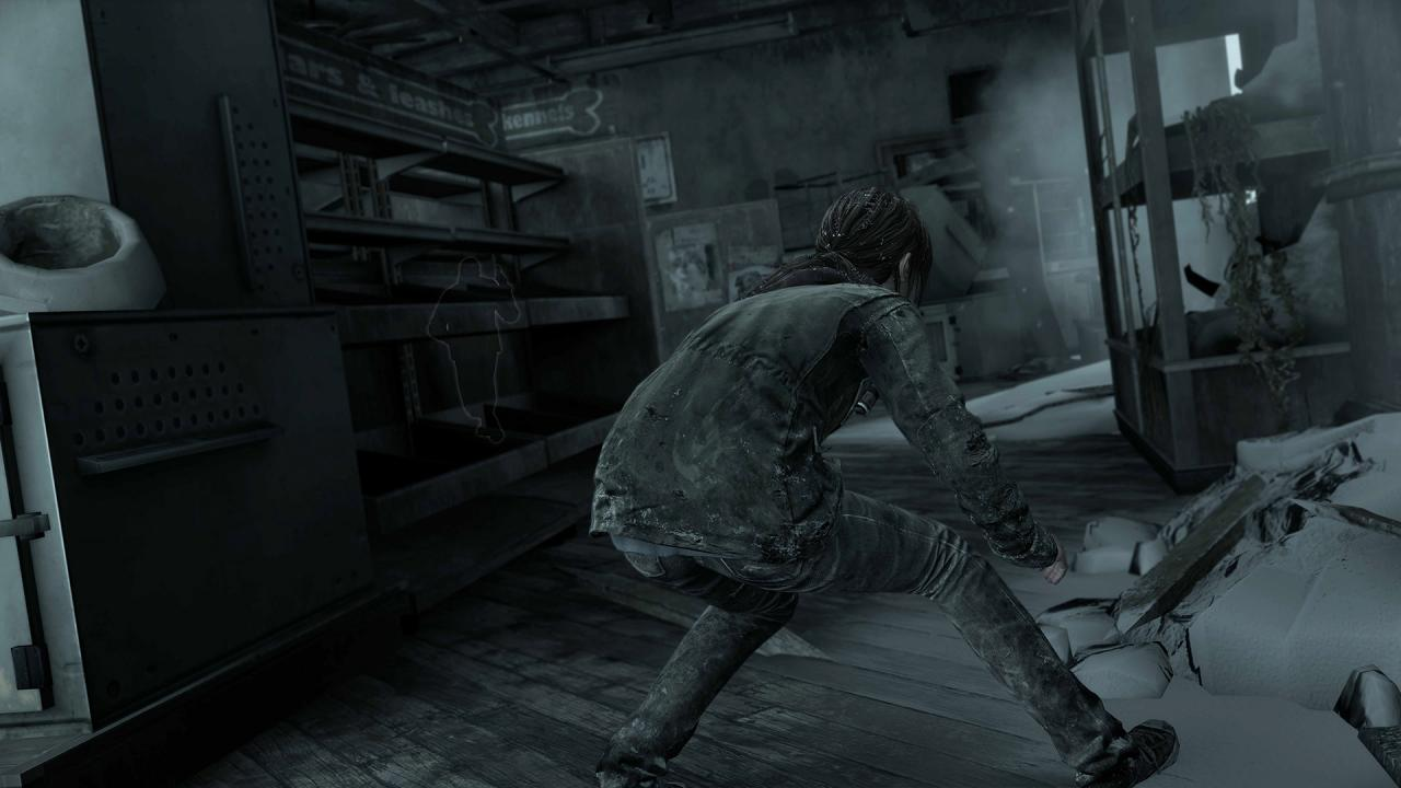 Recenzja gry: The Last of Us Remastered #5
