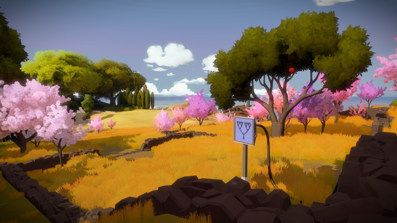 The Witness #30