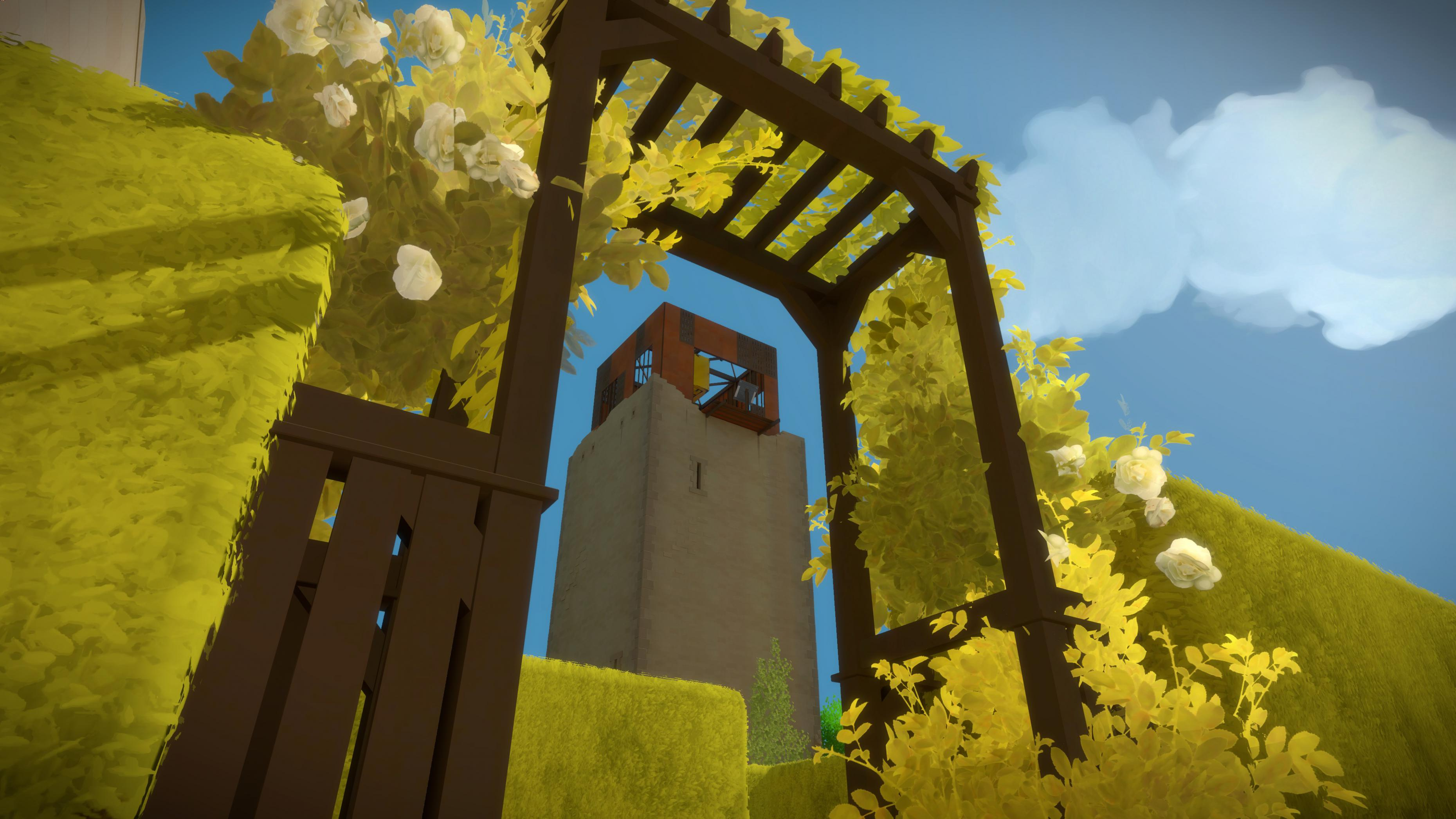The Witness #37