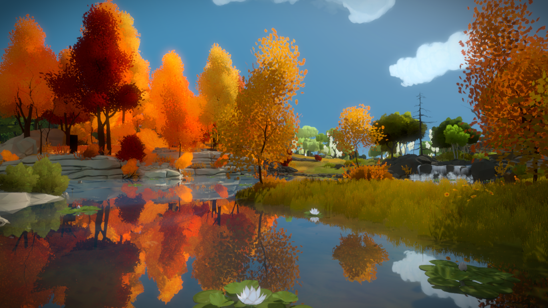 The Witness #52