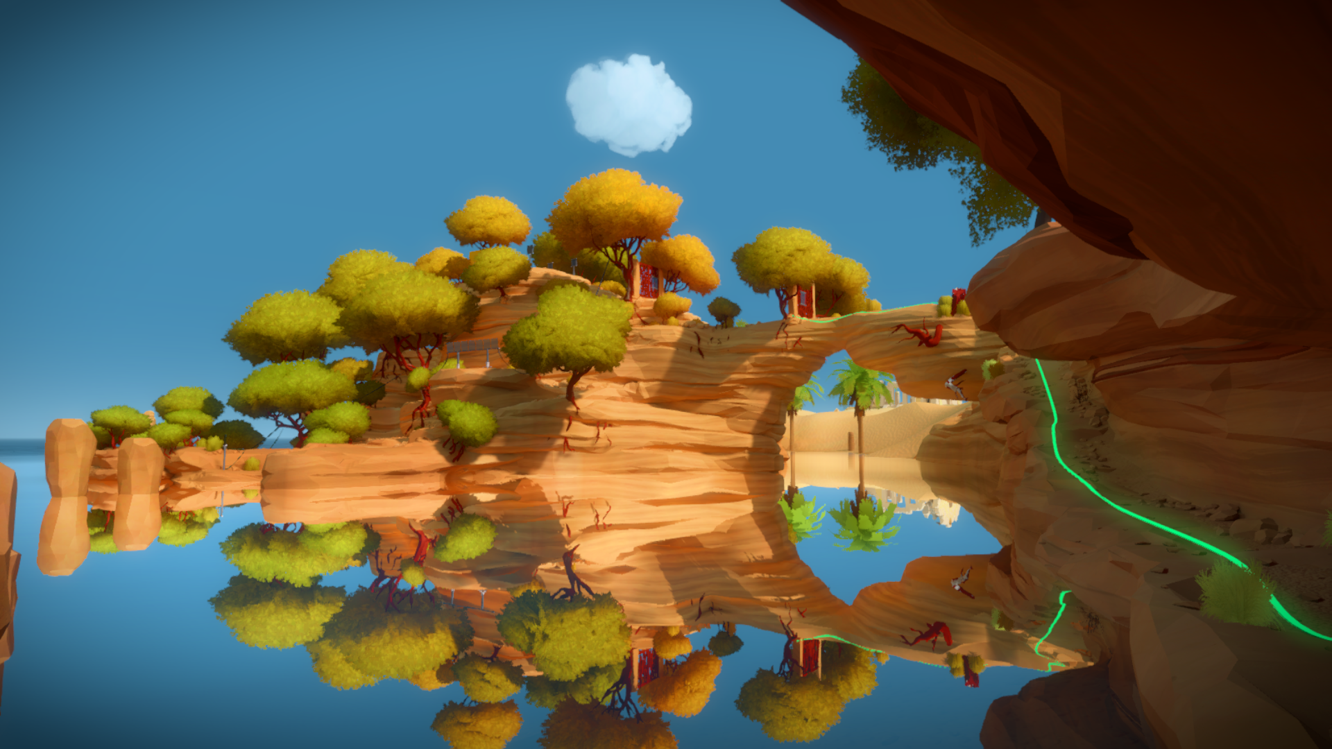 The Witness #46