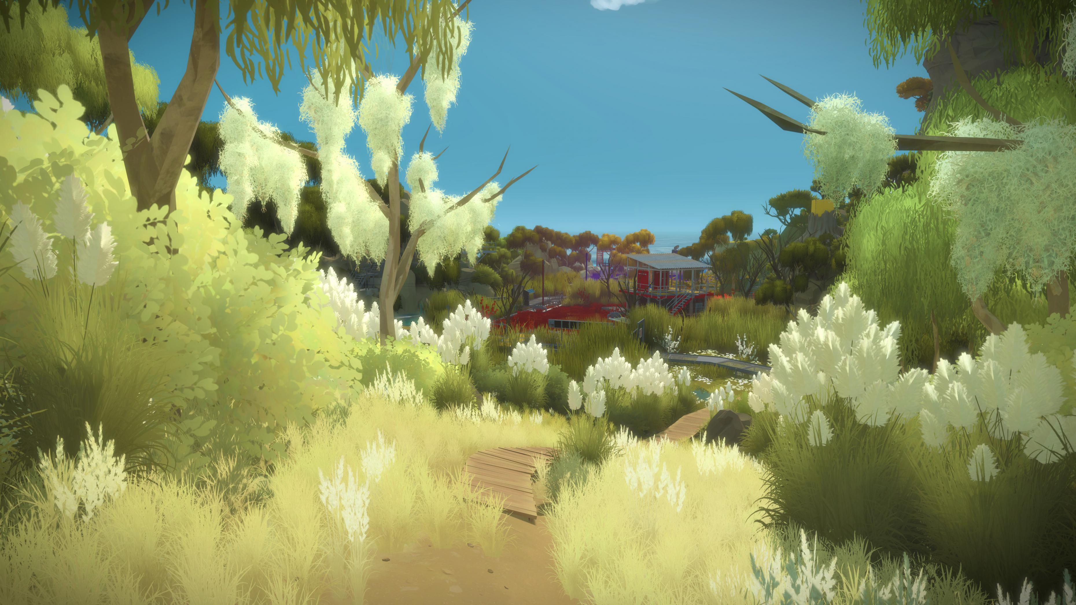 The Witness #39
