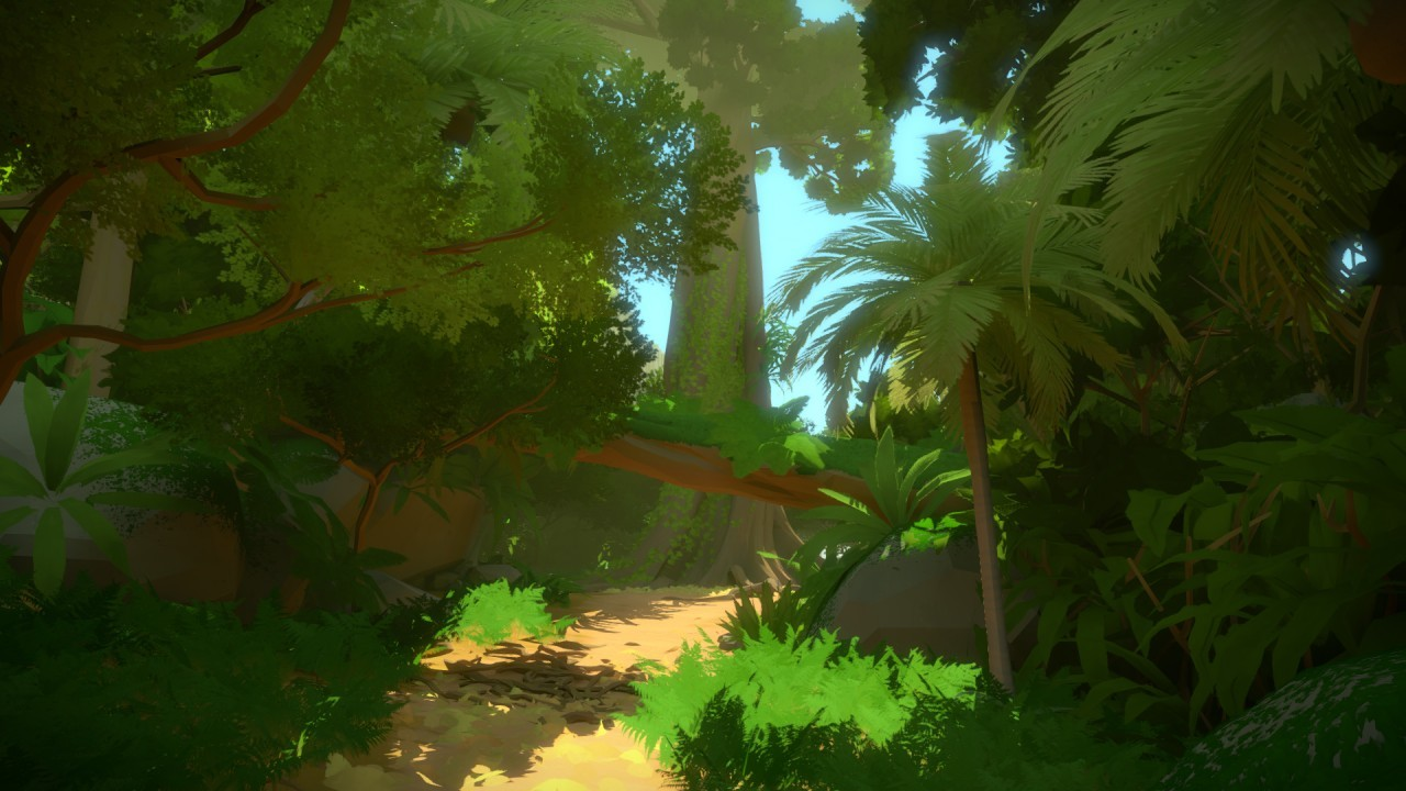 The Witness #11