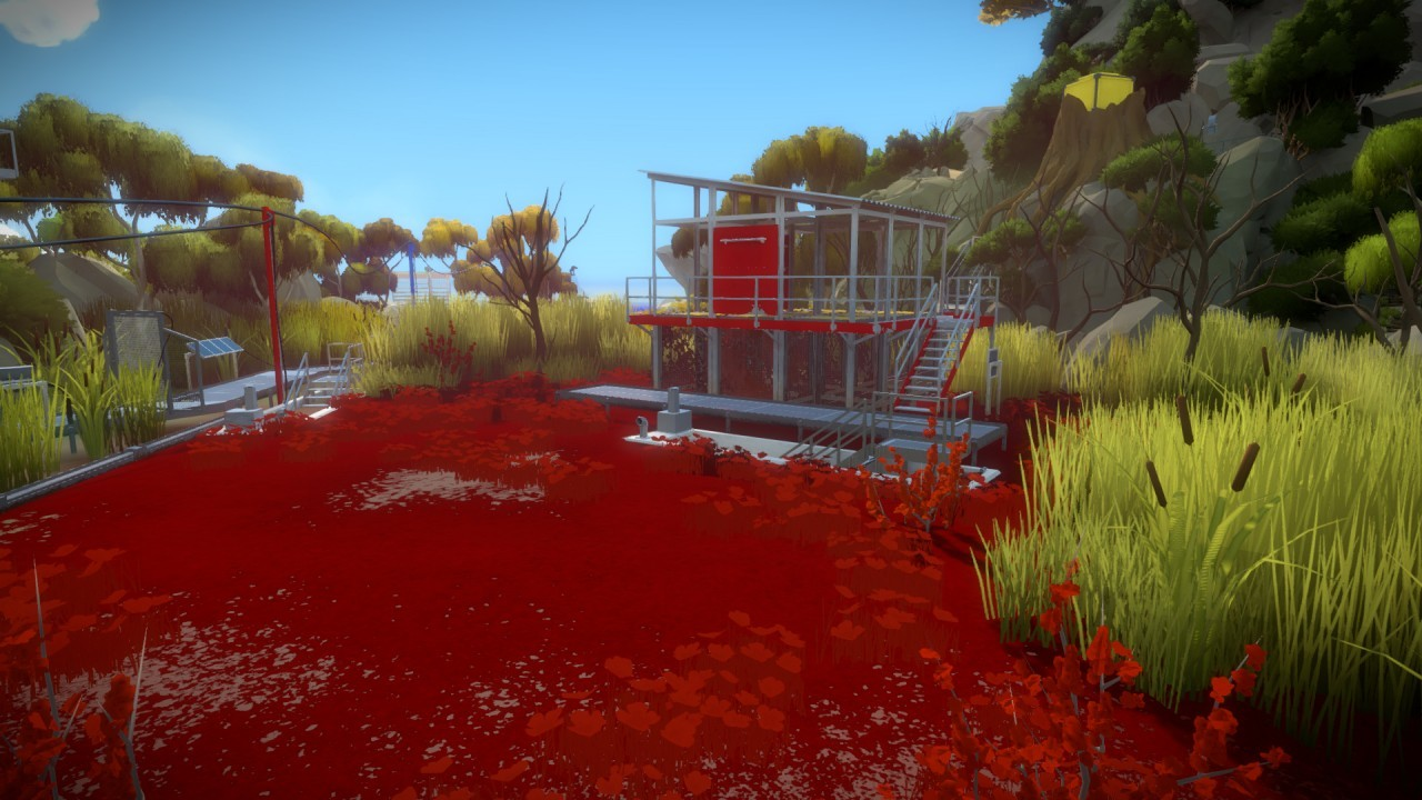 The Witness #24