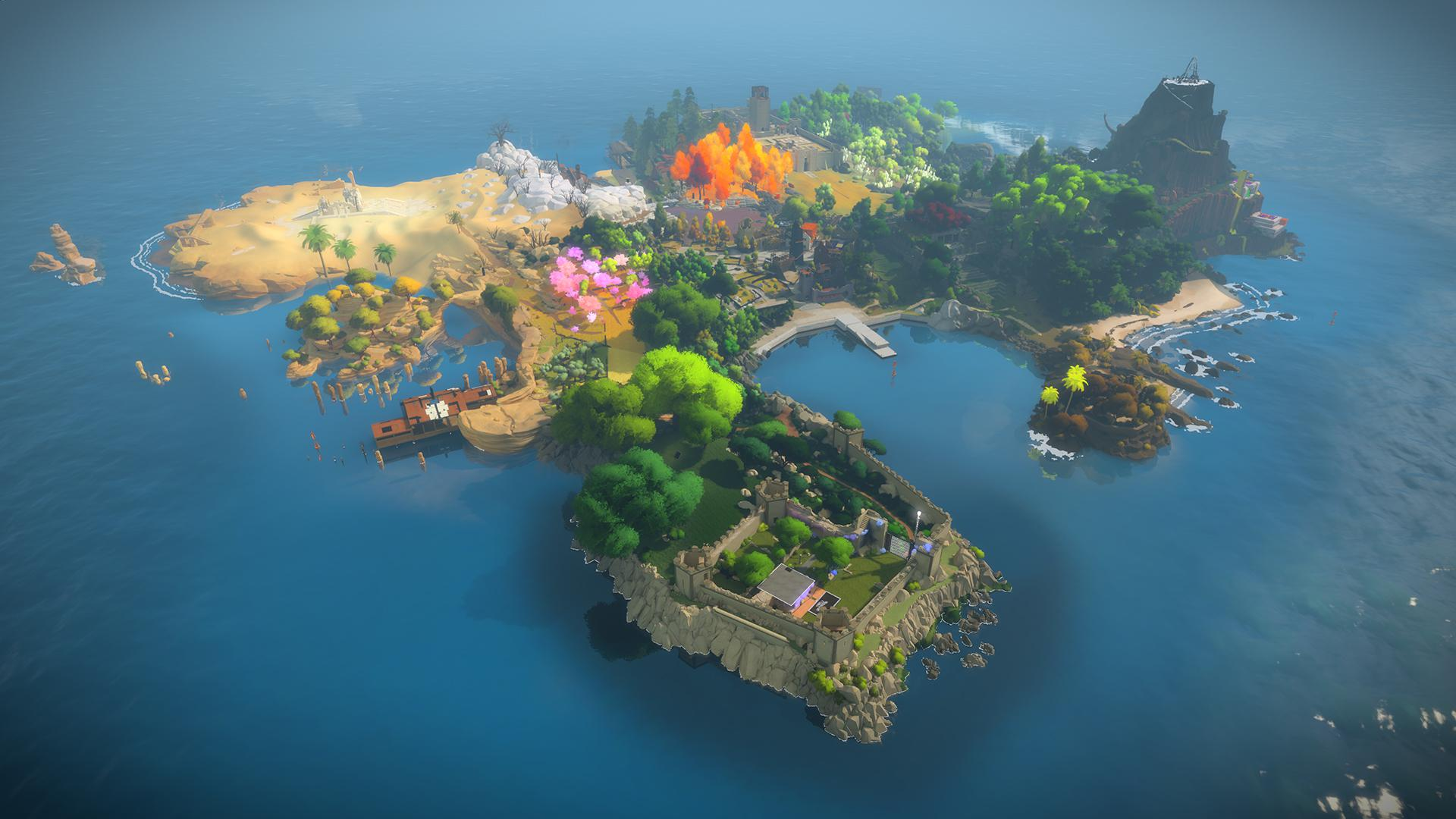 The Witness #43