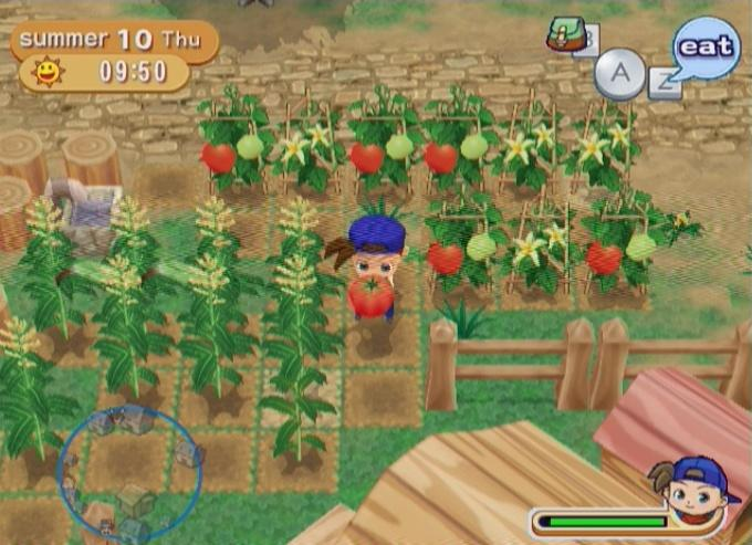 Harvest Moon: Magical Melody #1