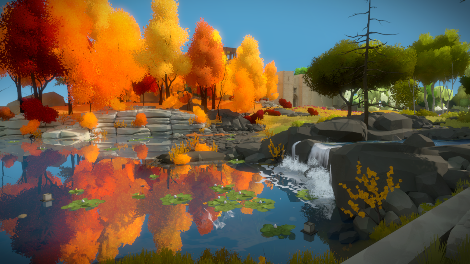 The Witness #47