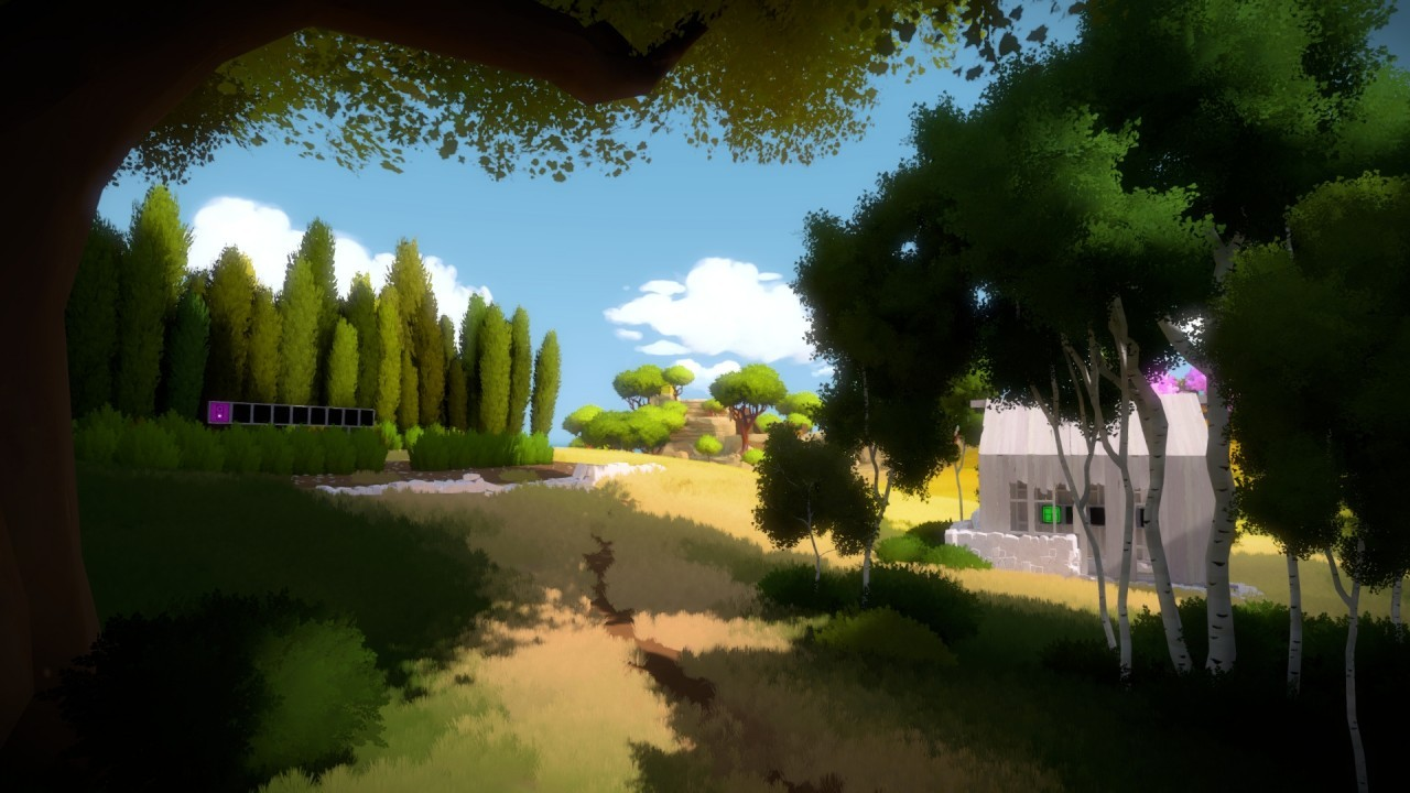 The Witness #29